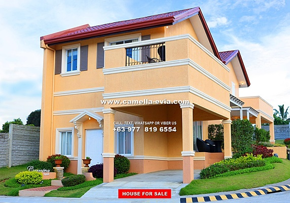 House and Lot for Sale in Daang Hari